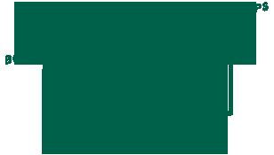 logo carnet lyonnais